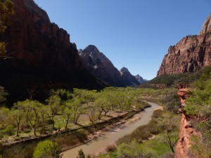 The Virgin River in Zion NP