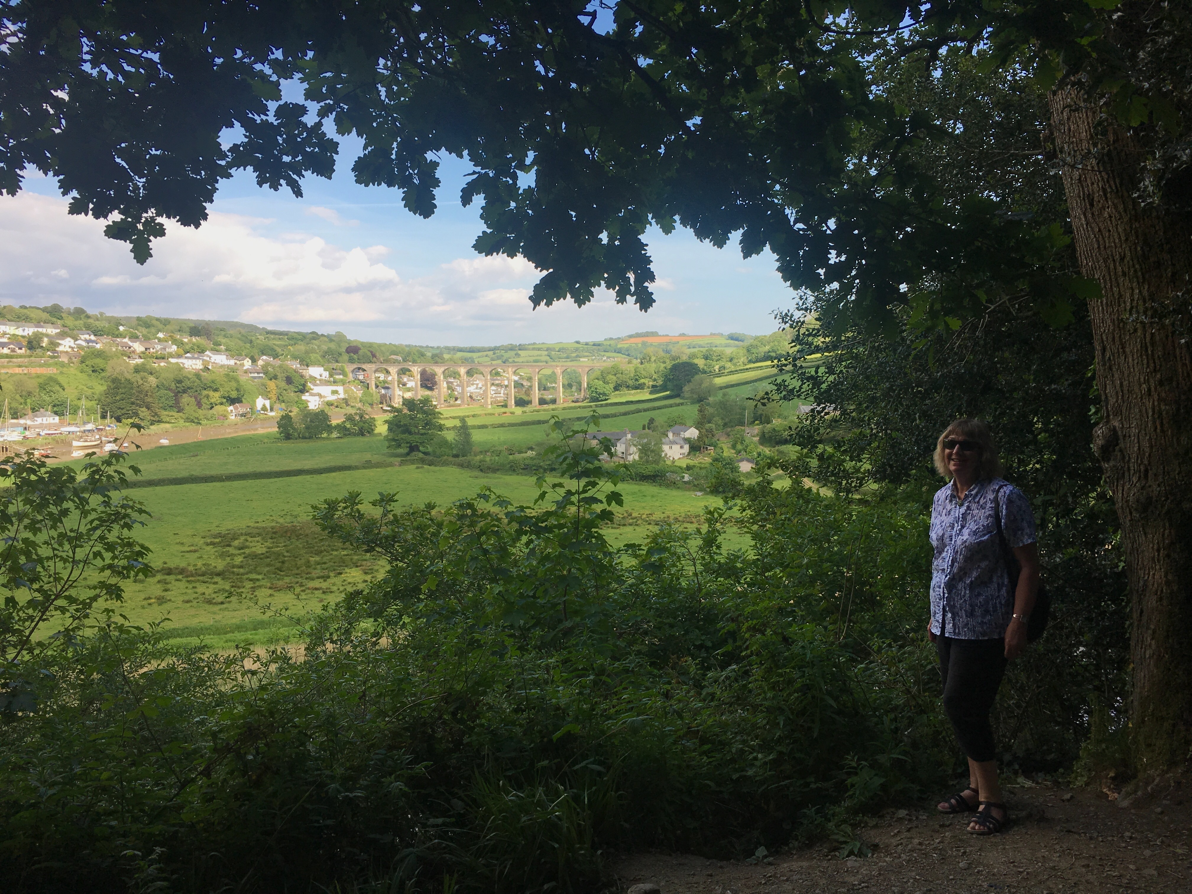 A tale from the Tamar Valley